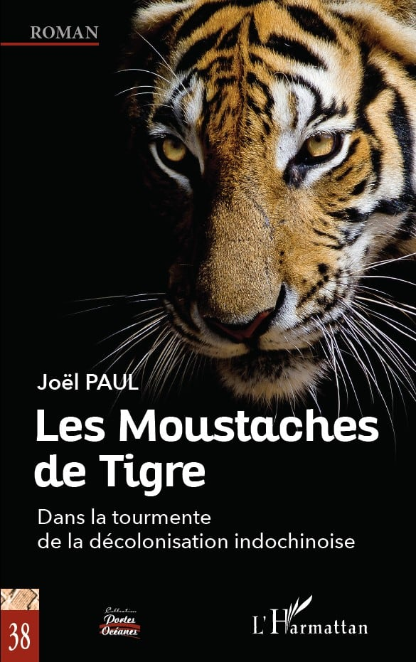 Couverture Moustache