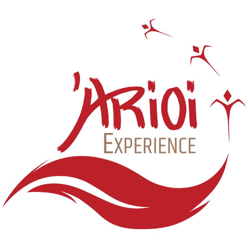 LOGO ARIOI EXPERIENCE